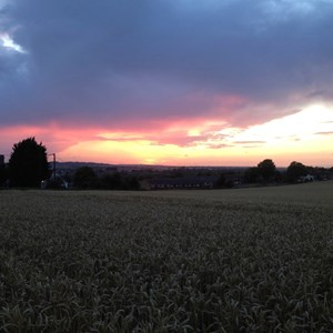 Sunset over South Darenth