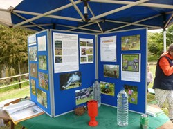 Promotion stall at Washingpool Farm