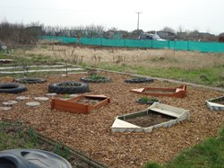 Cliffe and Cliffe Woods Parish Council Allotments