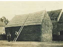 Dressing a haystack, Vine Farm, High Street