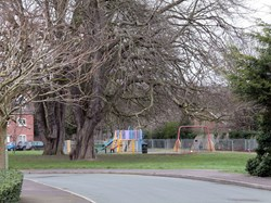 The Chestnut trees & Play areas