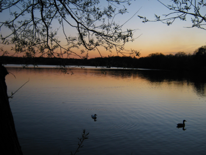 Hedgecourt Lake