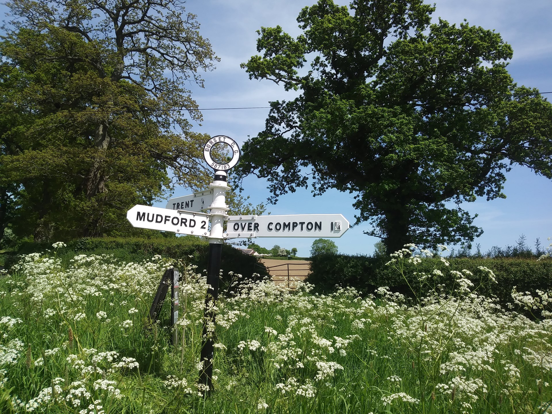 Newly restored fingerpost at Trent Triangle