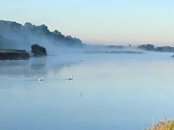 'Fog on the Trent'  by  Steve Sharpe