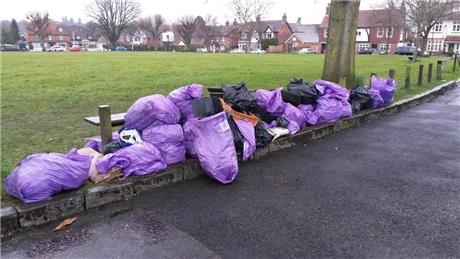 Horsmonden Parish Council Clean for the Queen