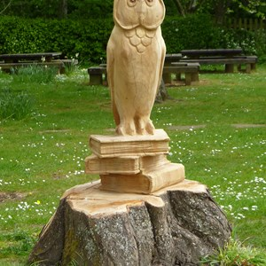 Owl carving from old tree