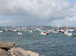 Busy Brixham Harbour