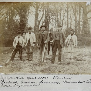 Juniper Hall, April 1885 planting. Becket, Mercer, Saunders, Mercer Snr?, Bolton, Doker?, Longhurst Snr?