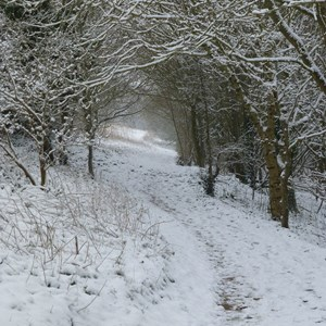 The Allington Hillbillies Snow March 2018