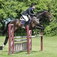 Show jumping at Park Farm Show