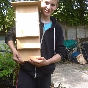 Bat Box making with Critchill School and Frome Town Council