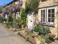 Cottages in bloom