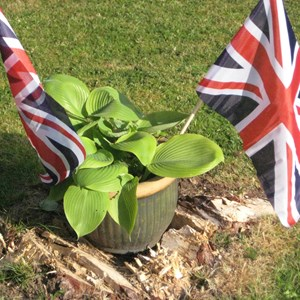 Bleasby Community Website Bleasby in Bloom & VE Day 2020