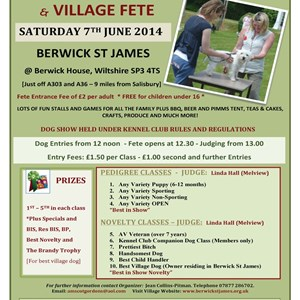 Berwick St James Parish Duck Race - 8 June 2014