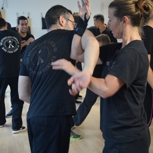 High Halden Village Wing Chun