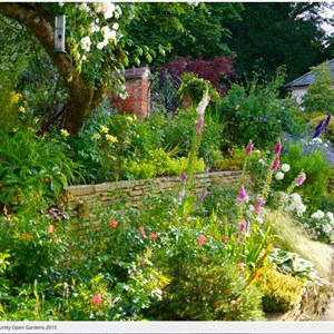 Berwick St James Parish Open Gardens 2015
