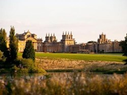 About Us, Blenheim Palace