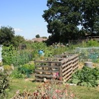 Overton Parish Council Woodlands Allotments