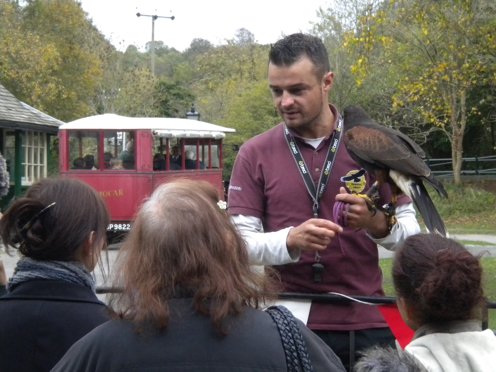 Hawking About regularly visit the Museum with their owls and birds of prey