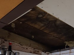 bar ceiling before