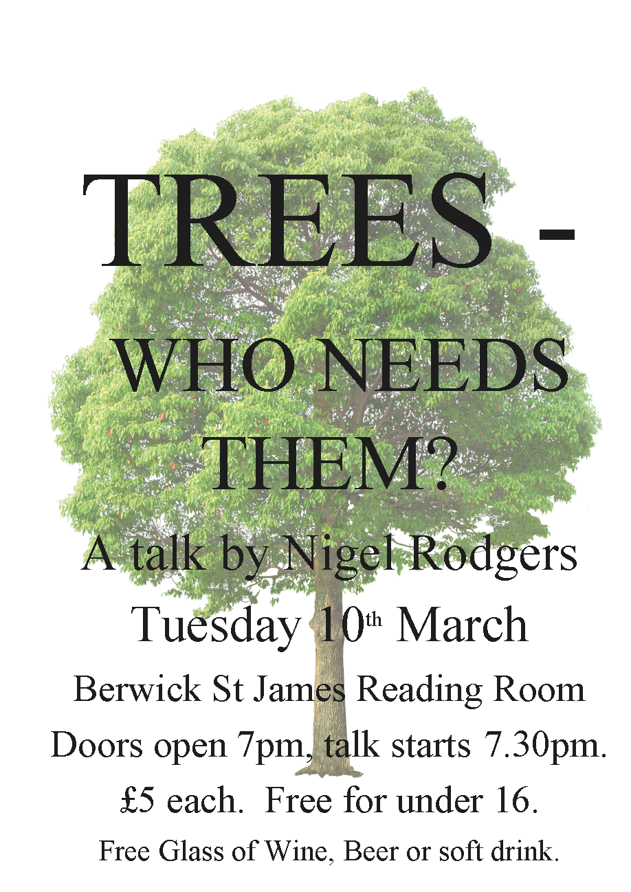 Berwick St James Parish Trees - Who Needs Them?