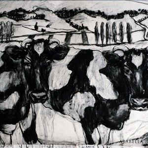 Cows in France. Charcoal.  Artist`s possession.