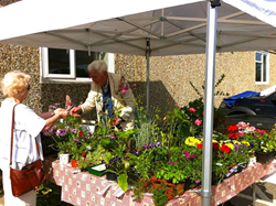 Stallholders, Hildenborough Farmers Market