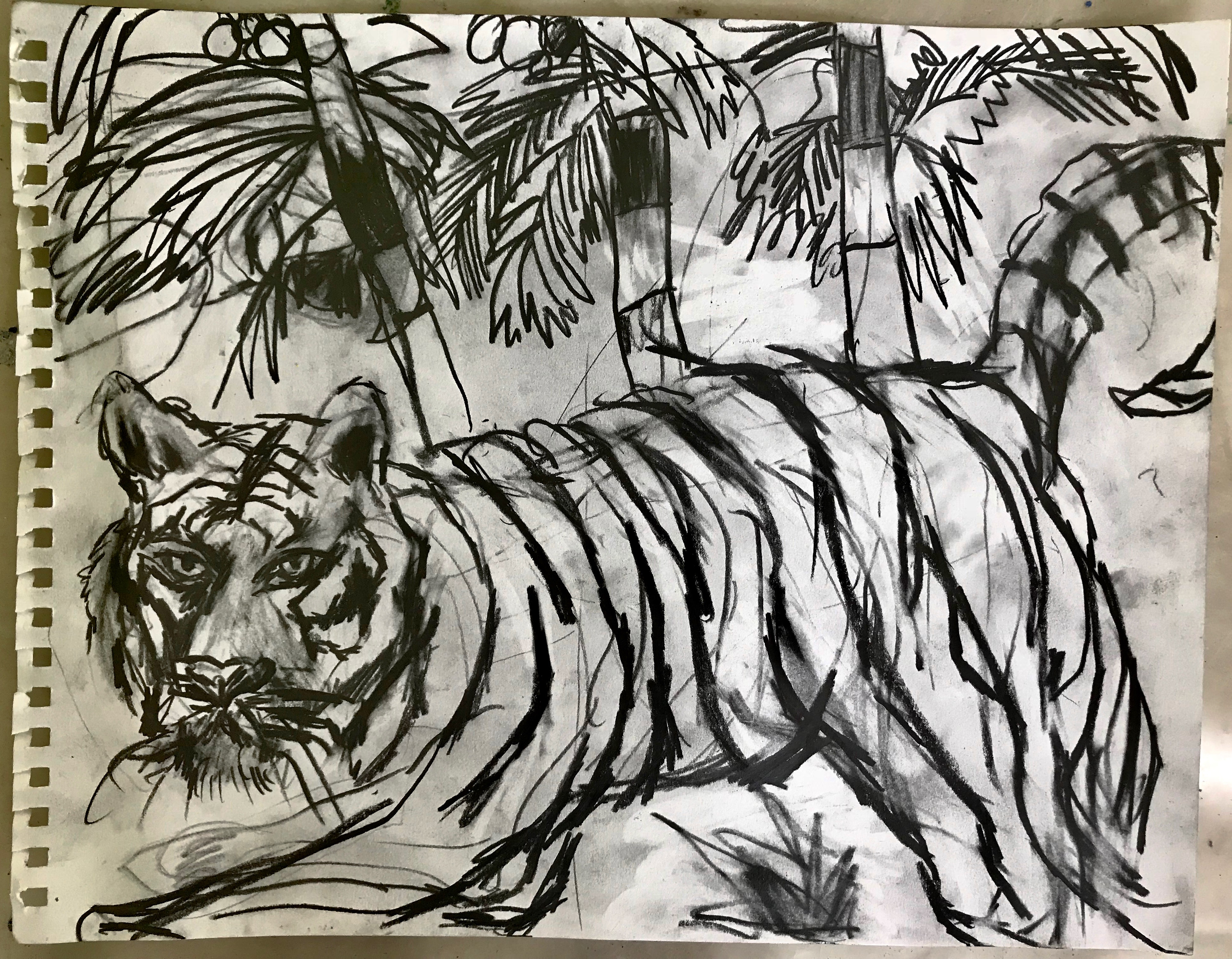 Tiger with palms. Sketchbook series. 2018