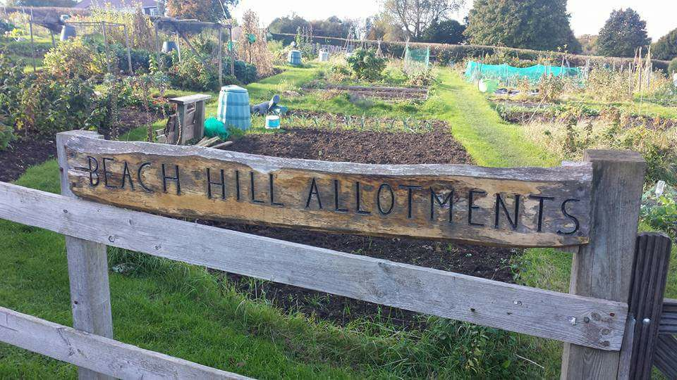 Portishead Allotments Assn Beach Hill
