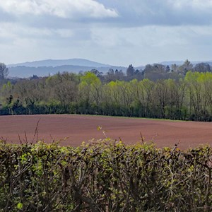 14. View Across The Wye Valley, Herefordshire