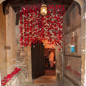 Waterfall of poppies in porch