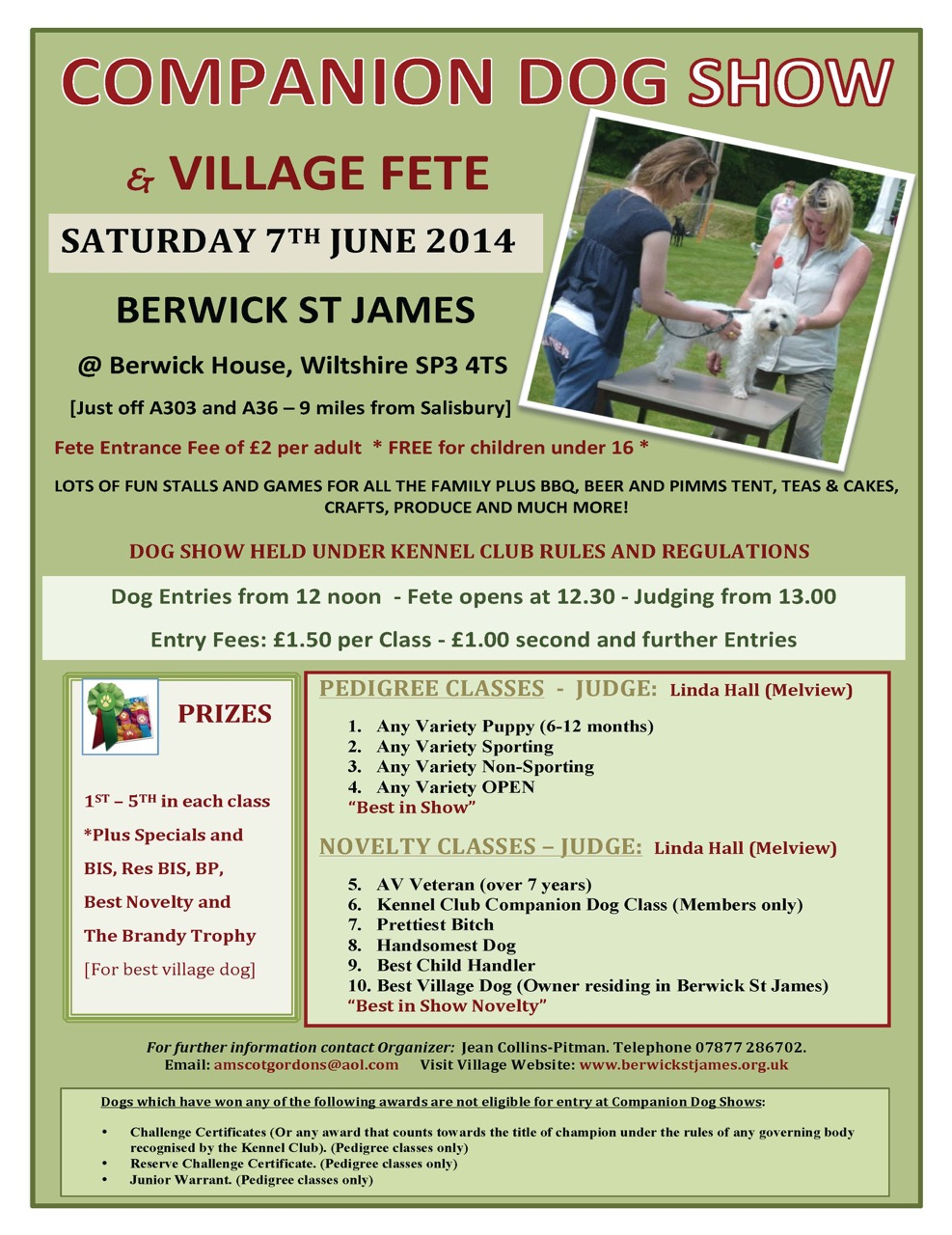 Berwick St James Parish Berwick Fete & Duck Race 2014