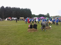 North Baddesley Parish Council Village Day