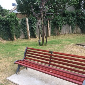 Marie Vyse Memorial Bench and Tree