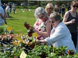 Mentmore Parish Council 2018 Plant Sale 21st April