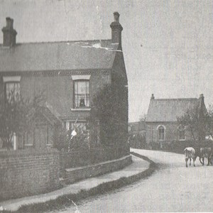 The Old Willows, Reading Room and Forge c 1905
