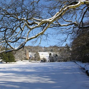 West Bagborough - Snow