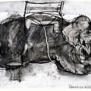 Indian charcoal drawings, Arabella Ross
