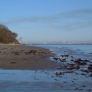 Priory Bay Low Tide