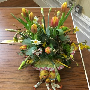 Mickleham and Westhumble Horticultural Society April 2016 show pictures