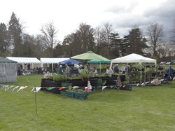 Mentmore Parish Council 2012 Plant Sale