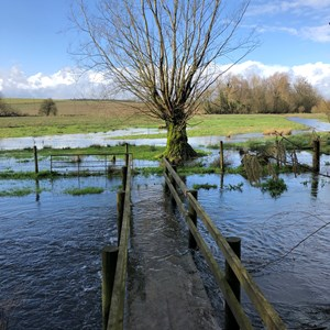 Flooded Bridge by Sarah Humphreys