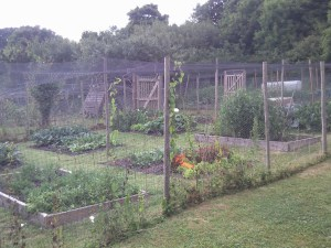 Ivinghoe Parish Council Allotments