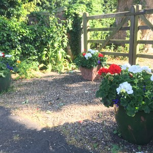 Bleasby Community Website Bleasby in Bloom 2020