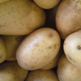 From King Edwards to Maris Piper, we have a wide range of potatoes here at Wilson and Sons.