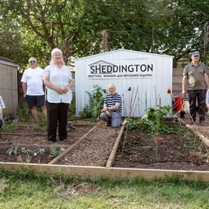 Sheddington's Garden