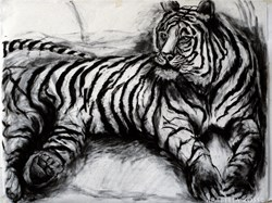 Charcoal Drawings, Arabella Ross