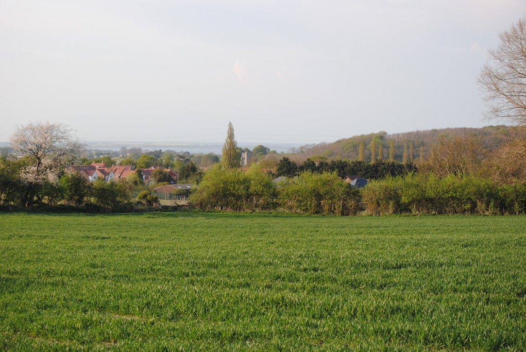 View from Public Right of Way to Cranbrook woods