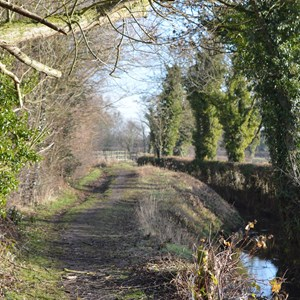 Bleasby Community Website Walking & Countryside Group