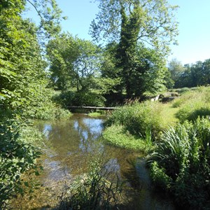 The River Meon